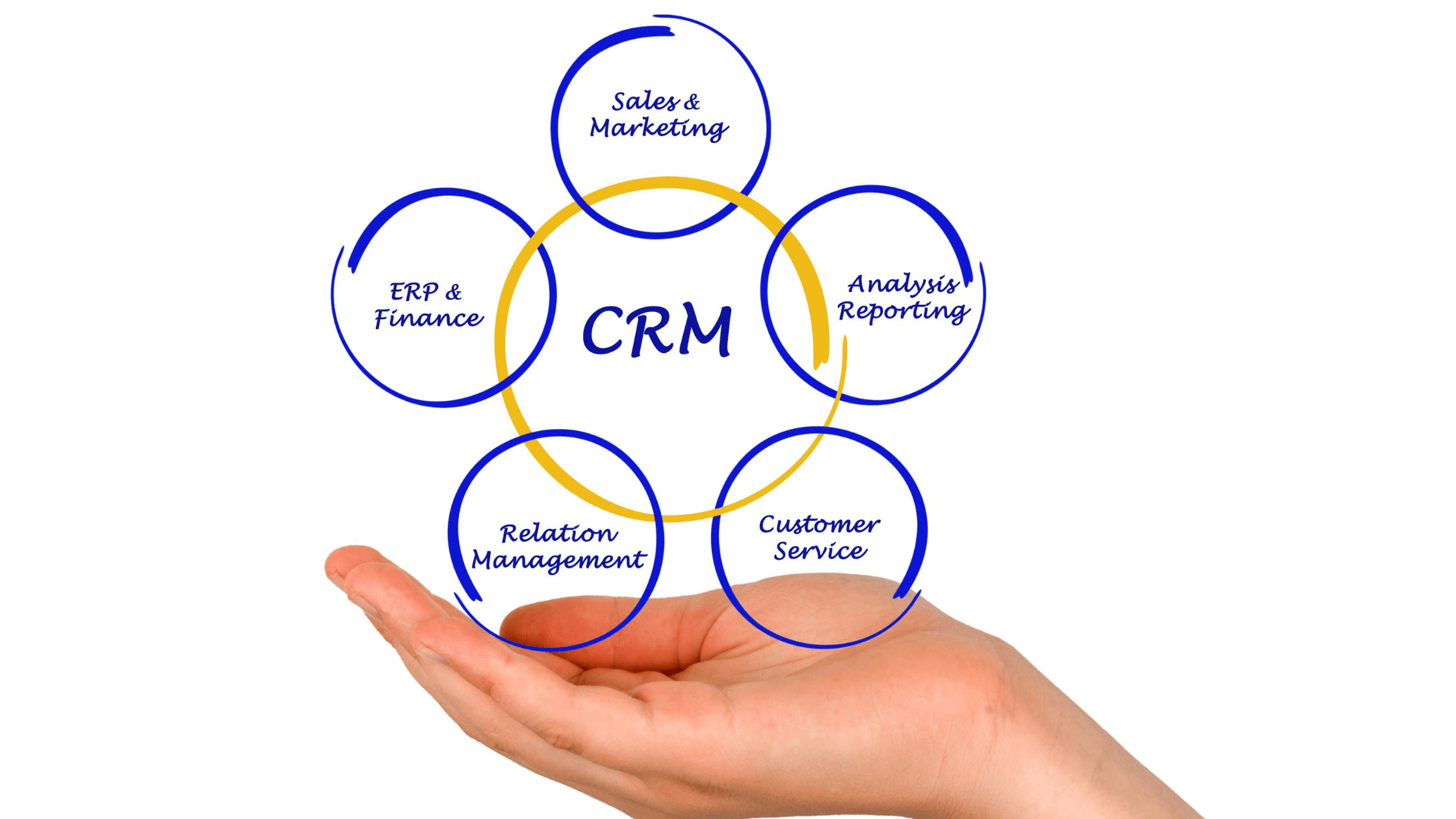 CRM for organize business operation